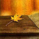 Leaf Zen M by Rebecca Cozart