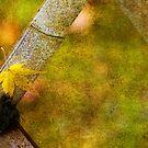 Leaf Zen V by Rebecca Cozart