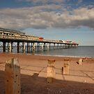 Teignmouth Pier - Devon by rosiephoto