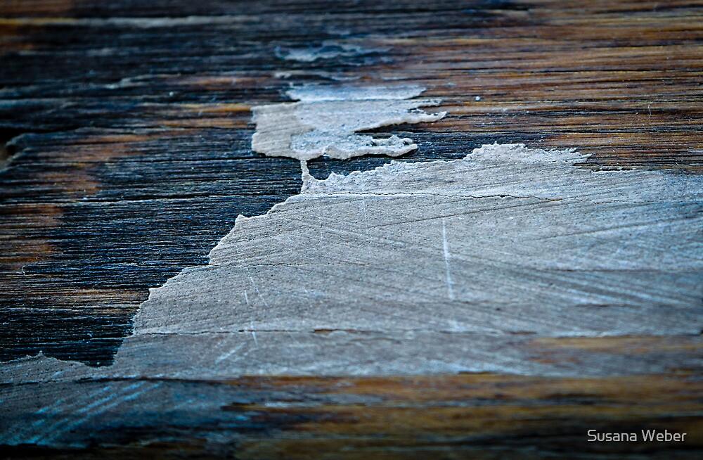 Windswept... by Susana Weber