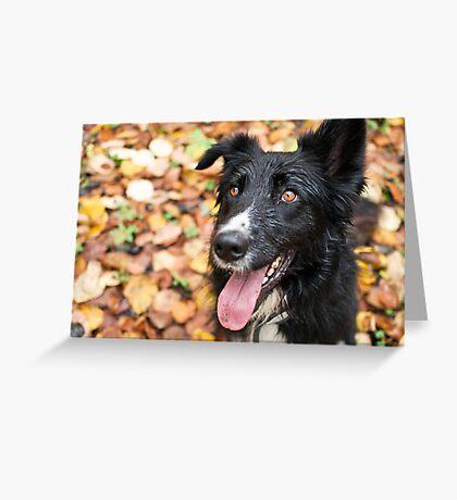 Autumn Eyes Greeting Card