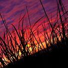 Sunset Aux Îles de la Madeleine by Jacinthe Brault