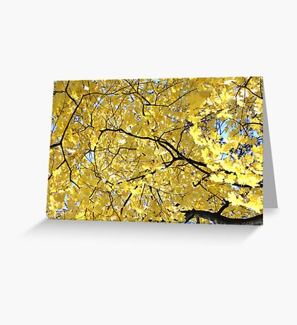 Golden  Greeting Card