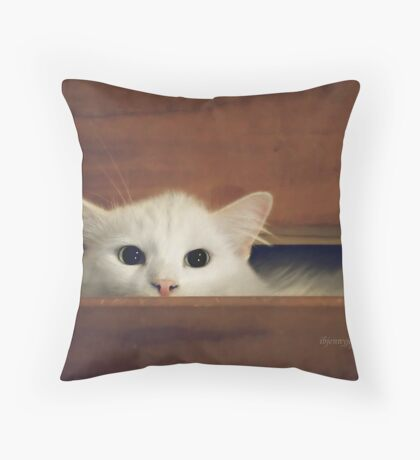 What's in Your Drawer? Throw Pillow