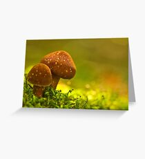 double brownies Greeting Card
