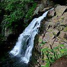 Upper Section of Hawk Falls by Debra Fedchin