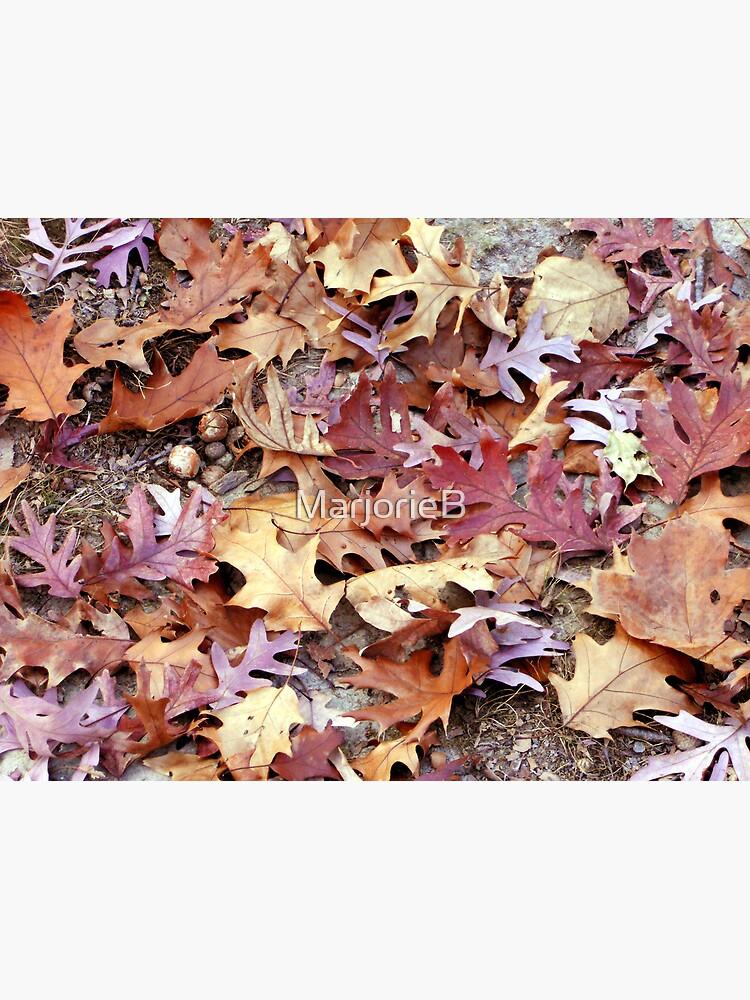 Glory Underfoot by MarjorieB