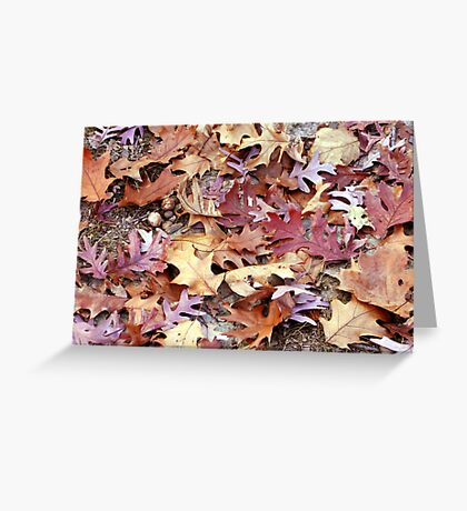 Glory Underfoot Greeting Card