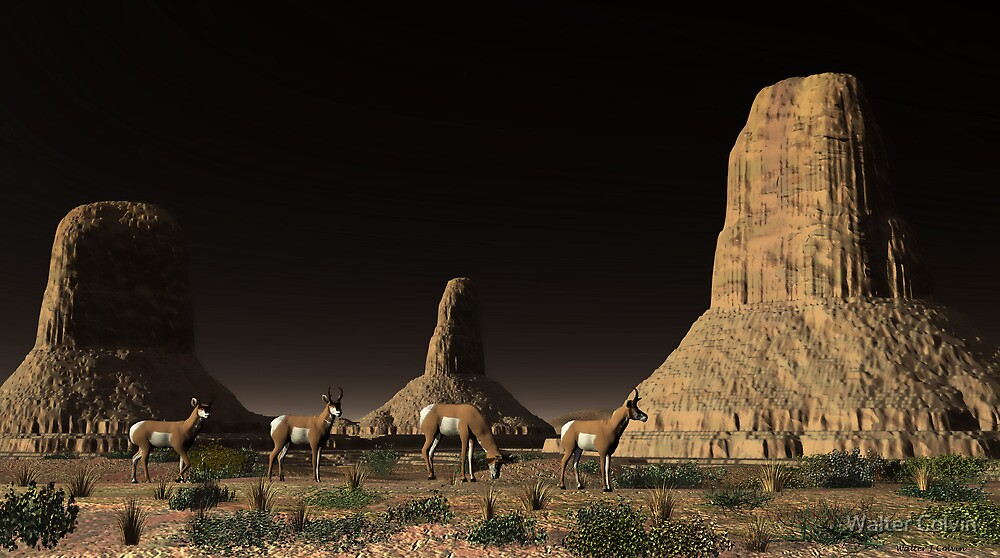 Desert Butte Antelope by Walter Colvin