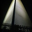 Shanghai World Financial Center by Luke Griffin