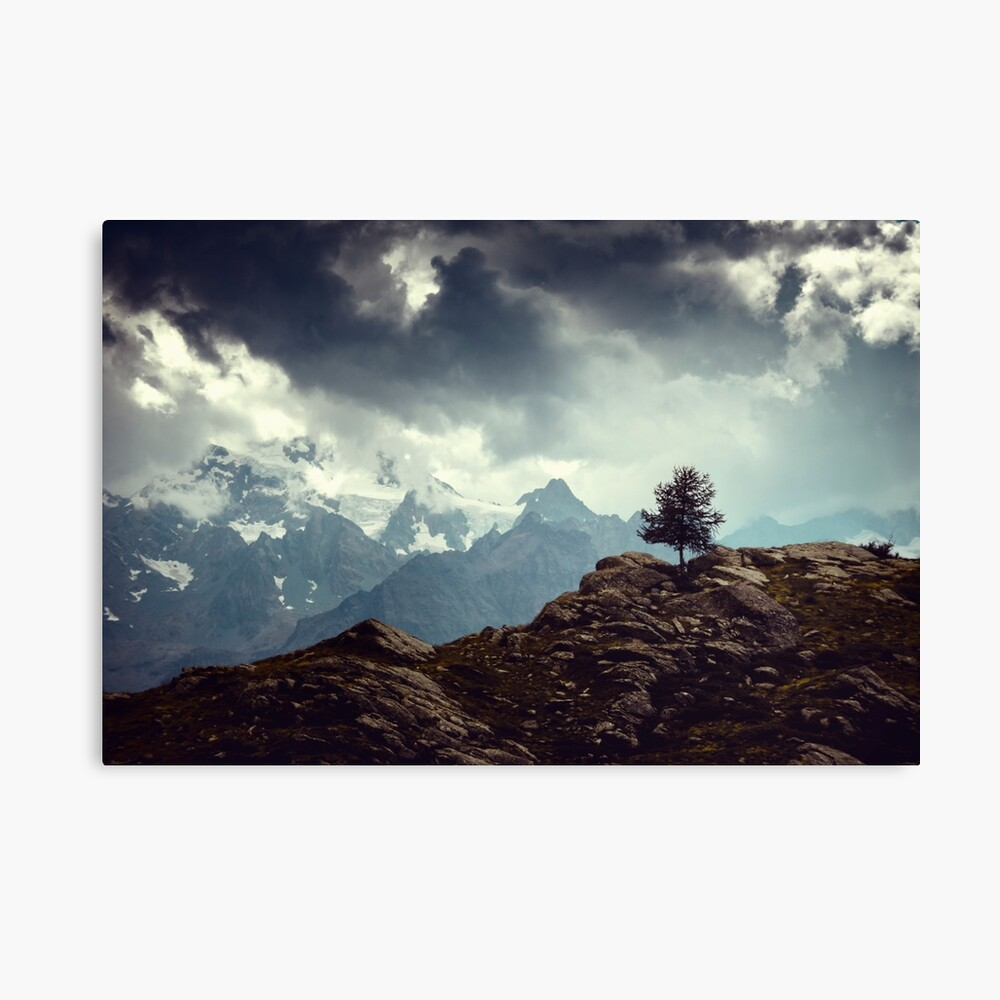 Majestic Mountains and a lone tree Canvas Print