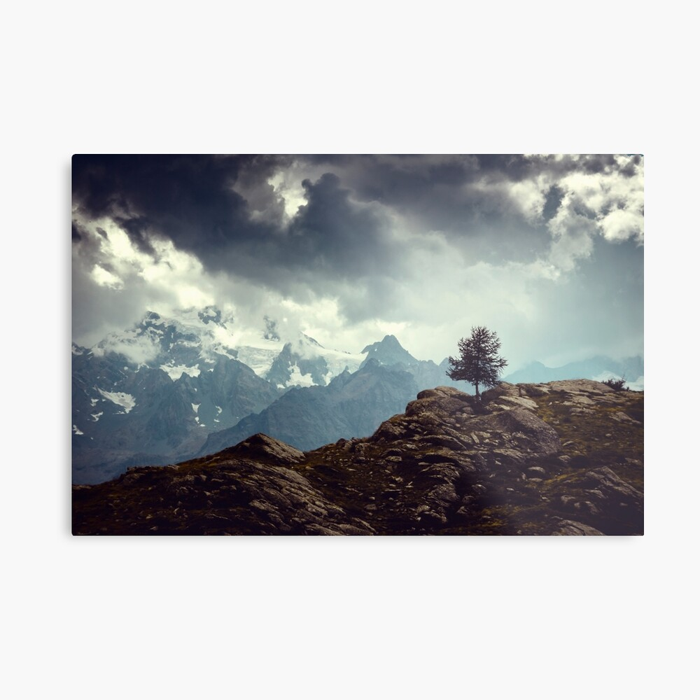 Majestic Mountains and a lone tree Metal Print