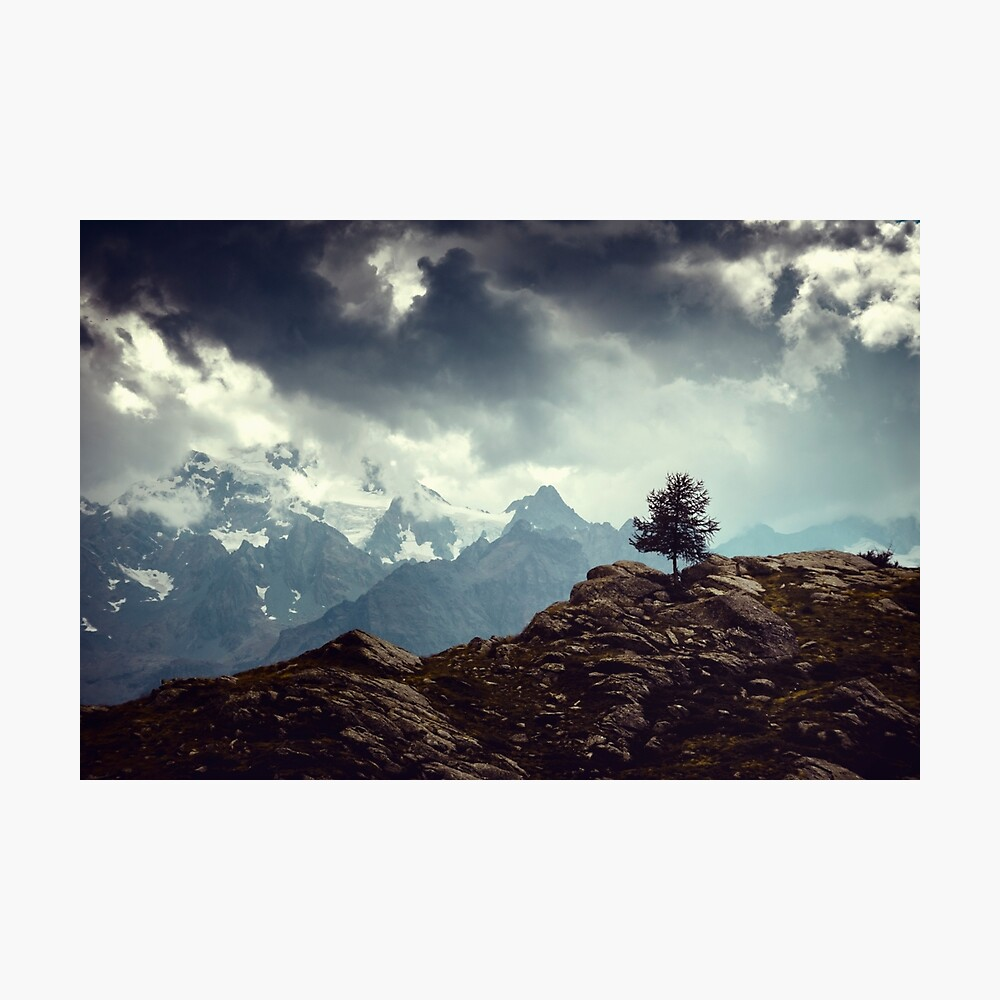 Majestic Mountains and a lone tree Photographic Print