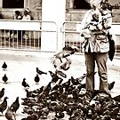 They call him Mr Pigeon Man by oddoutlet