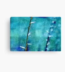 aqua and indigo Canvas Print