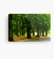 I would rather be with trees Metal Print