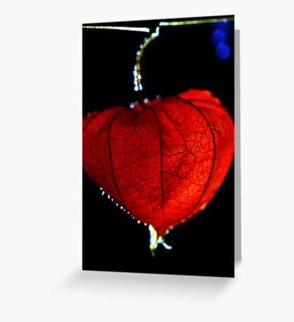 Lantern. Lantern. Sun, moon and stars. Greeting Card