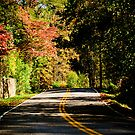 October Road by Phillip M. Burrow