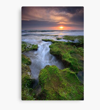 Luminous Times Canvas Print