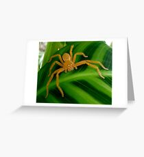 Hunting the Green and Green Greeting Card