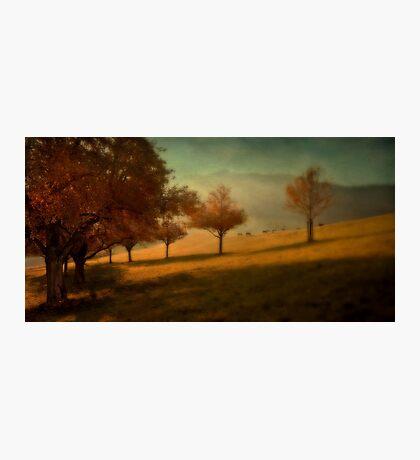 Swiss Idyll Photographic Print