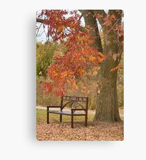 Fall's Saddness Canvas Print