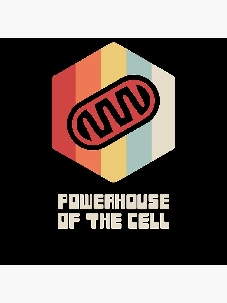 Powerhouse - Mitochondria / Biology Cell by EMDdesign