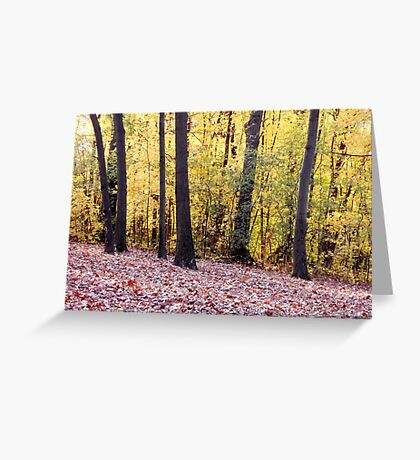 In Golden Woods (card) Greeting Card