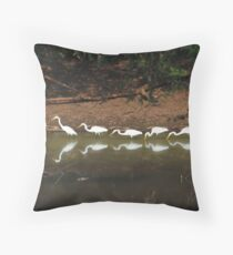 Egrets having their lunch Throw Pillow