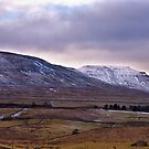Whernside Fell by Trevor Kersley
