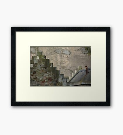 crow steps  Framed Print