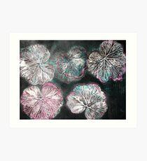 Novembers Garden 2 - Monoprint Art Print