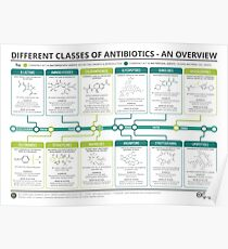 Guide to Antibiotics Poster
