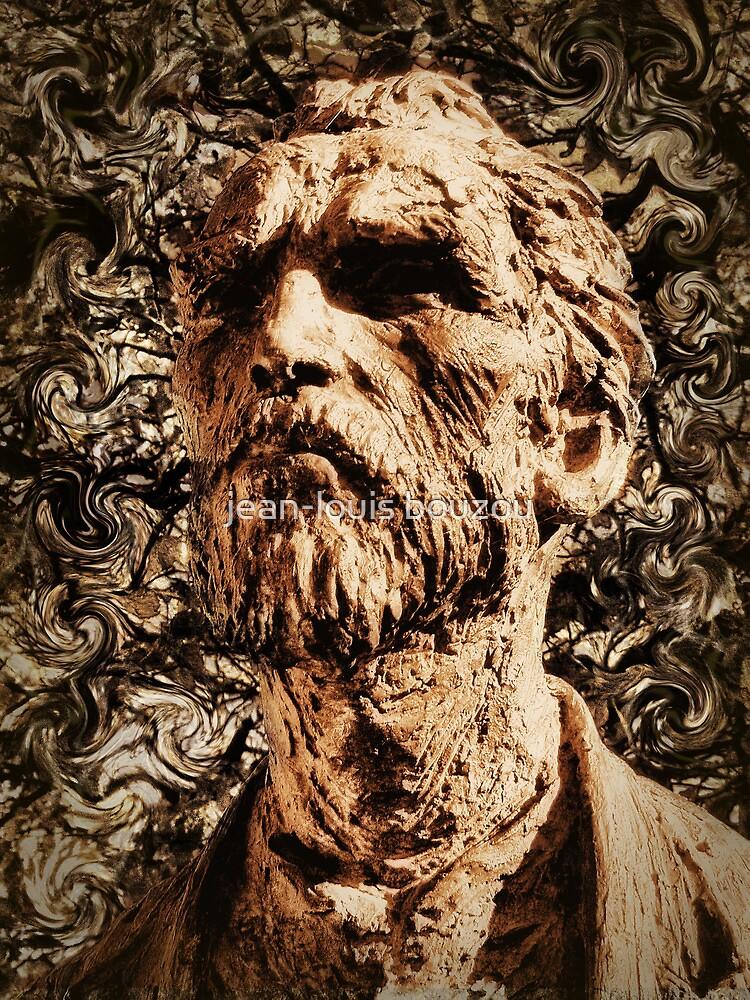 Van Gogh in Saint-Rémy by jean-louis bouzou
