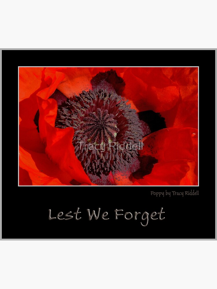 Lest We Forget by taos