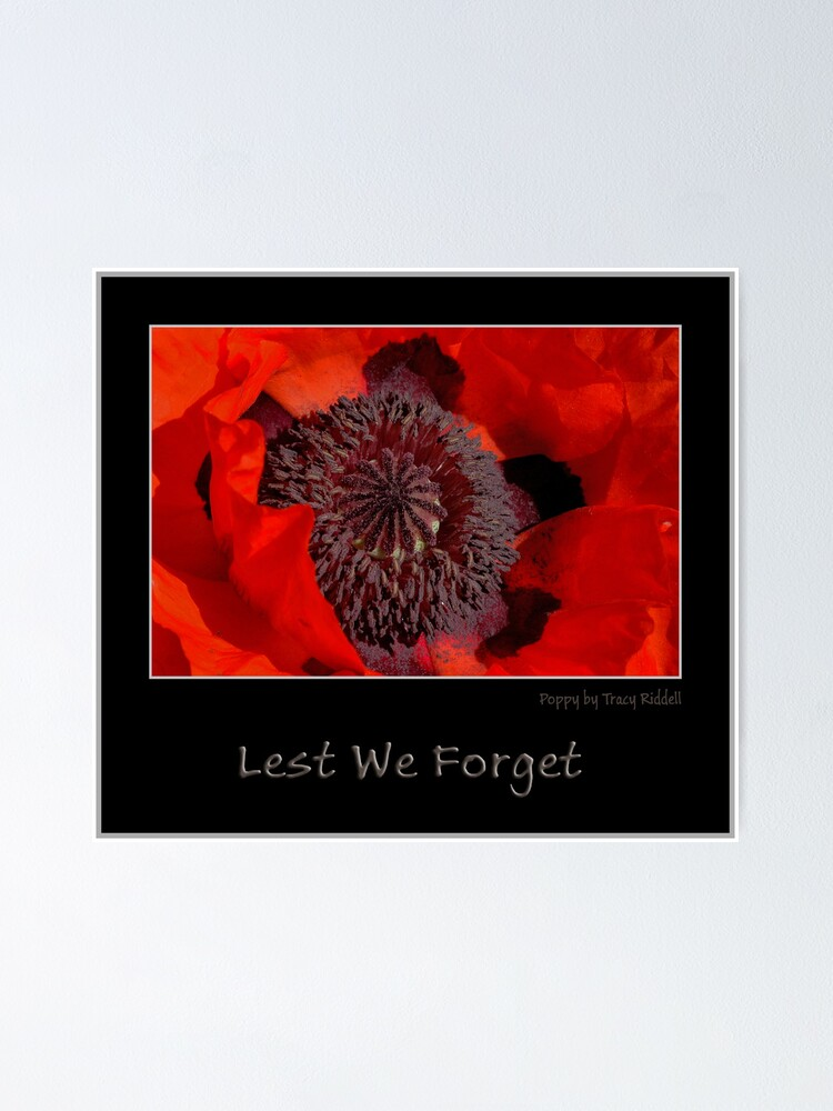 Alternate view of Lest We Forget Poster