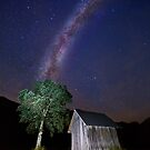 The tree at the end of the Universe by Delfino
