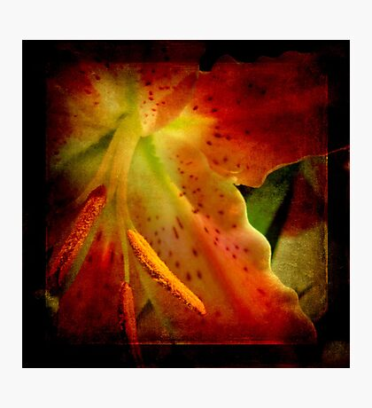 Flowery Photographic Print