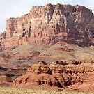 Rugged Arizona by Chappy