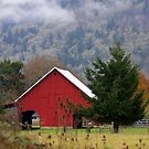 Double Arched Red Barn (287 views) by aussiedi