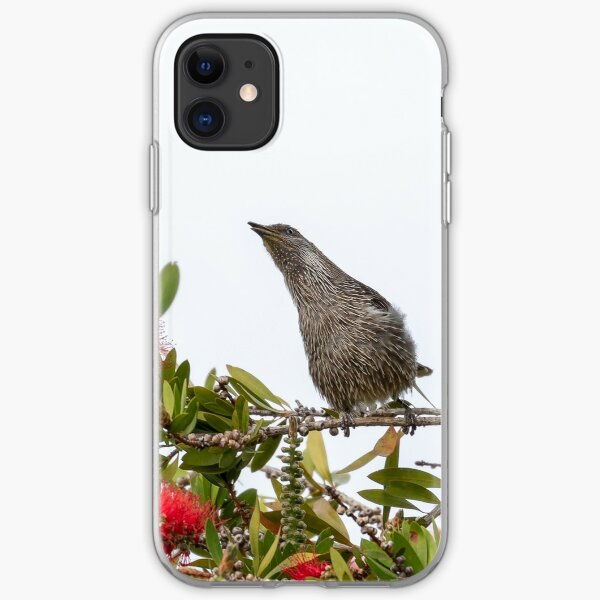 Wattle Bird iPhone Soft Case