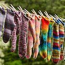 Nova Scotia Hand Knitted Socks by Debbie  Roberts