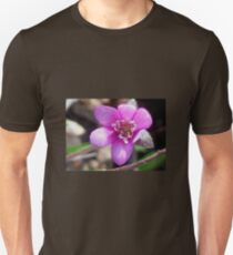 First Hepatica of the season  T-Shirt
