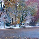 Autumn Winter Street Light Color by Bo Insogna