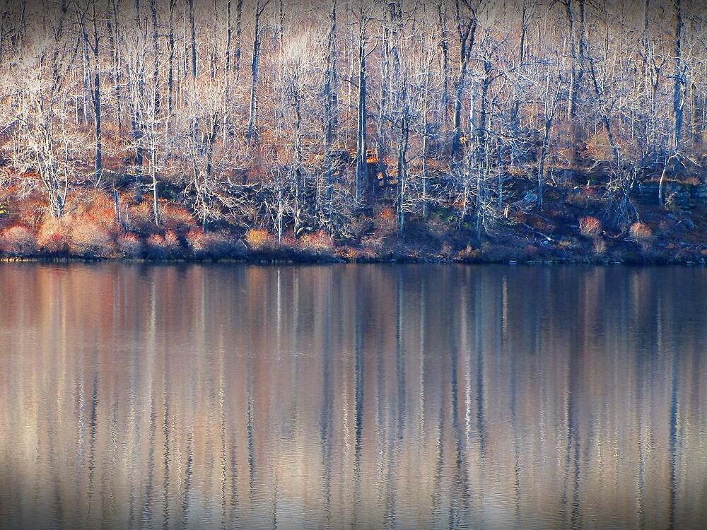 Desolate Splendor by David Dehner