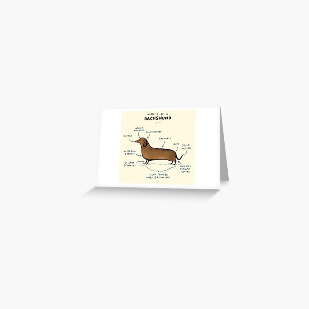 Anatomy of a Dachshund Greeting Card