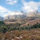 Cape Mountains by Alan Marques