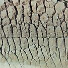 Rock patterns by tasadam