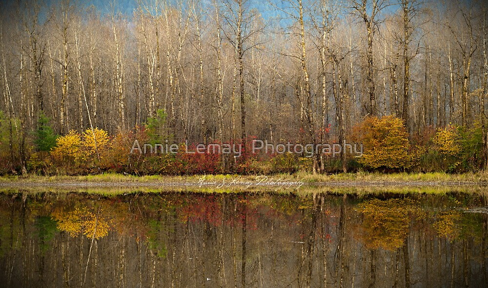 Sunday by Annie Lemay  Photography