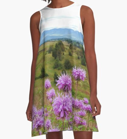 Mission Mountains and Horsemint A-Line Dress